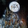 Histoire de nuit. Claude Valery
