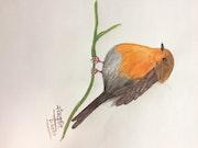 Bird. Sanskruti Trambadia