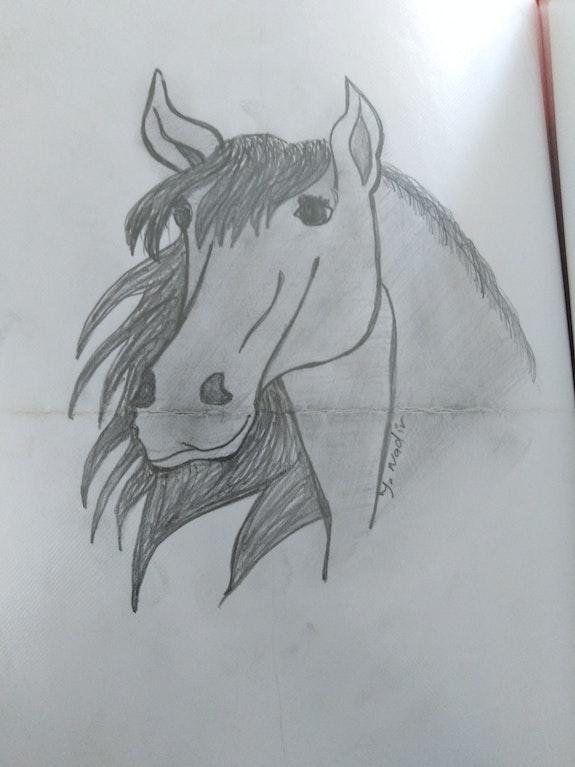 Draw.  Https://youtu.be/jfzsj5Xwg3G