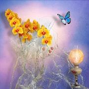 Orchideen mit Schmetterling.