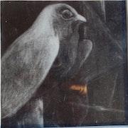 Churchill, le faucon de pierre. Mar
