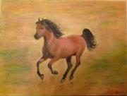 Un cheval au galop ! ! ! !.