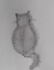 Etude de chaton.