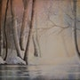 Lac ombragé. Guylaine