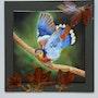 L'envol - oiseau coloré dépliant ses ailes. K. Zi. Yak
