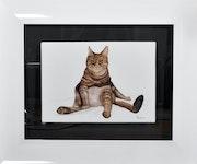 Chat poseur tigré brun/roux en pose assise.