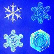 4 Schneekristalle, 4.3-4 + 5.3-4, Cut-Out. Hajo Horstmann