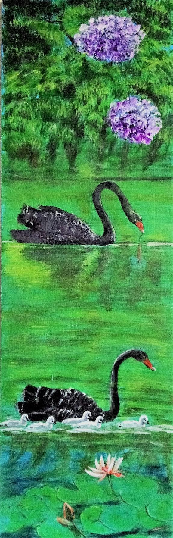 Les cygnes noirs. M-J M M-j m