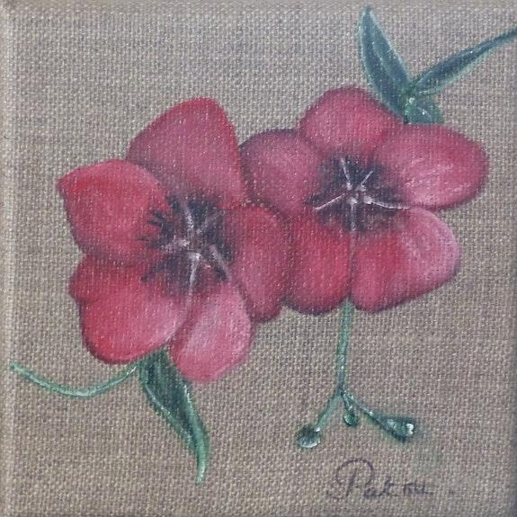 Les Fleurs de lin. Patricia De Chadois Patricia De Chadois