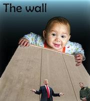 Le mur et le lémurien..