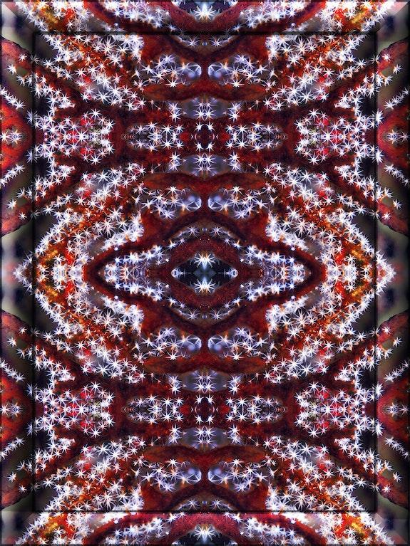 "«Stelle e Strisce"" - Sealosophy Collection. Martino Motti Digital Art Martino Motti"