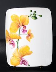 Orchidée jaune quatre fleurs écloses cinq boutons verts. K. Zi. Yak