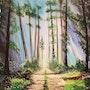 Allée de forêt. Sophie Ackermann