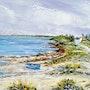 Baie de Crozon dans le Finistère. Mick