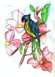 Perroquet.