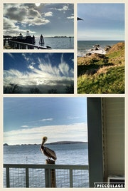 Coastal collage.