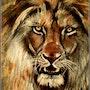 Le vieux lion. Joelle Bouriel