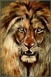 Le vieux lion.