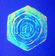 Schneekristall # 5.4 (1993). Hajo Horstmann