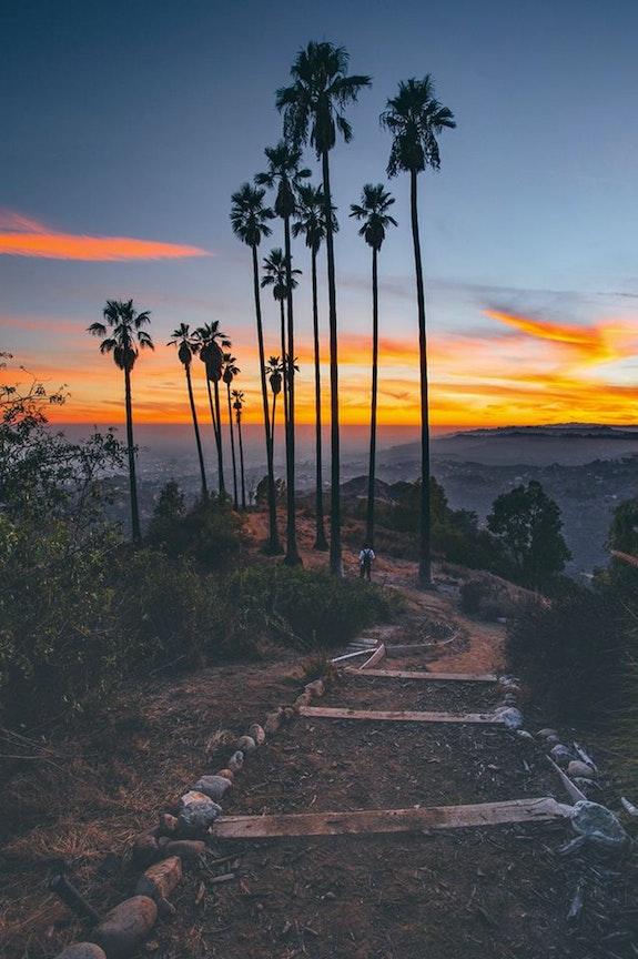 Vue sur Los Angeles.  Andrée Duniec