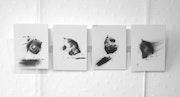 Petits formats 1. Katia Duterde