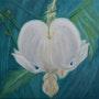 Coeur de Marie. Patricia De Chadois