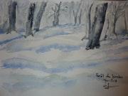 Forêt de janvier.
