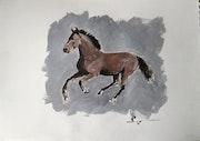 Horse 2. Dominique Dève