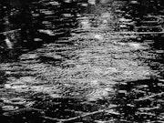 » Il pleure dans mon coeur comme il pleut sur la ville… » Paul Verlaine.