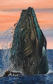 Baleine bleue, blue whale.