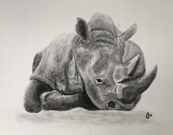 Le repos du rhinocéros. Ju Julie Andrieu