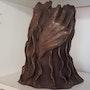 La main de la sagesse. Yveline Loustalot