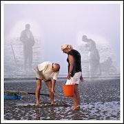 La pêche aux coques.