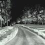 The winter drive. Morgan Art Studio