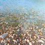 Pebble near the sea. Trnski Velimir