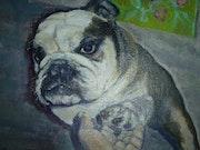 Hi! Mr. Bulldog!.