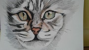Portrait de chat aquarelle.
