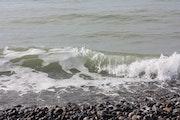 La vague, un mouvement perpétuel.