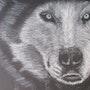 Regard de loup. Julie Andrieu