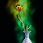 Blumenvase mit Tulpe. Juste