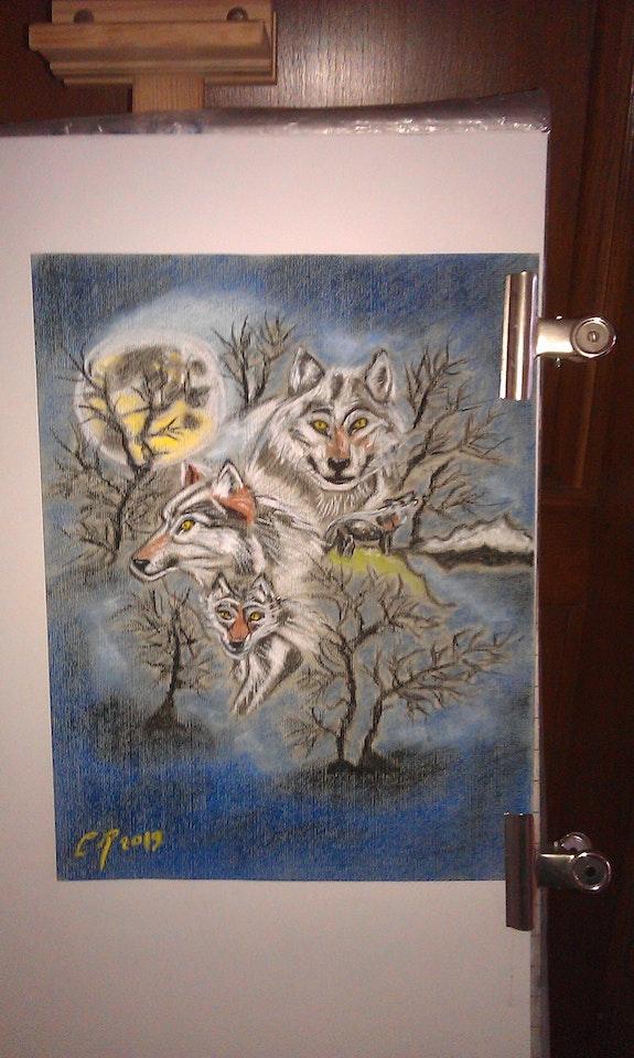 Les loups. Chantal Rousseau Fantou16