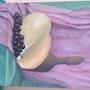 Still life with a sea shell. Saule Abdramanova