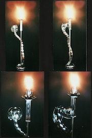 << Cobra libré >>vues différentes avec éclairage.. Thierry Ternisien