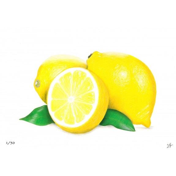 Citrons jaunes. Ivan Gassam Ig Draw