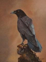 Maître corbeau.