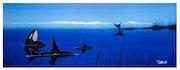 Orca. Teg