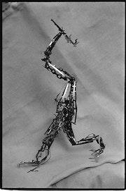 Scriptoraptor.