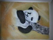 Le jolie Panda.