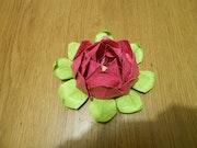 Fleur de Lotus °origami°.