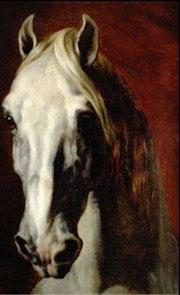 Le cheval blanc. Thytis